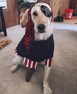 Peg-Legged Puppy Pirate Homemade Costume