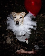 Pennywise Dog Homemade Costume