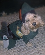 Peter Pan Costume for Dogs