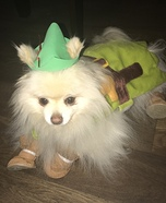 Peter Pan Dog Homemade Costume