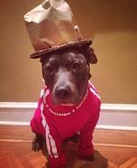Pharrell Dog Homemade Costume