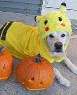 Pikachu Homemade Costume
