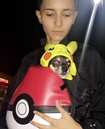 Pikachu Dog Costume