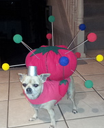 Creative costume ideas for dogs: Pin Cushion Costume Idea for Dogs