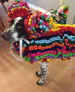 Pinata Dog Homemade Costume