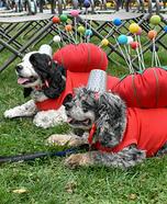 Pincushions Dog Costume