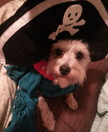 Piper the Pirate Homemade Costume