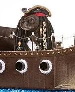 Pirate Jack Sparrow Dog Costume