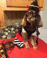 Pirate Dog Homemade Costume