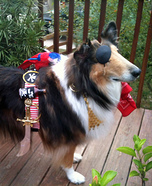 Homemade Pirate Dutch Costume