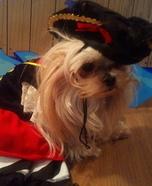 Pirate Pet Rescue Homemade Costume