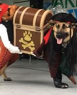 Pirate Thieves Dog Homemade Costume