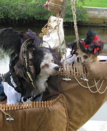 Pirates of the Caribbean Dogs Homemade Costume