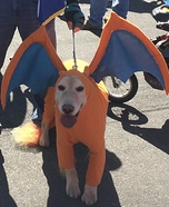 Pokemon Charizard Dog Homemade Costume