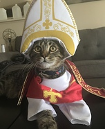 Pope Benedict Cat Costume