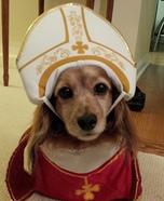 Pope Elwood Costume