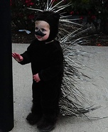 Porcupine Baby Homemade Costume
