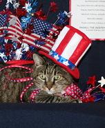 President Cat Costume