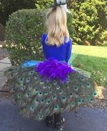 Pretty Peacock Homemade Costume