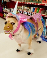 Pretty Pony Dog Homemade Costume