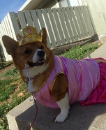 Pretty Princess Dog Costume