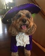 Prince Dog Homemade Costume
