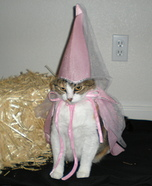 Princess Cat Homemade Costume