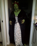 Princess Fiona Zombie Costume