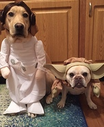 Princess Leia and Yoda Dogs Costume