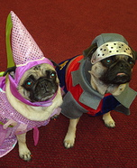 Princess Miso and Sir Opa homemade costumes for dogs