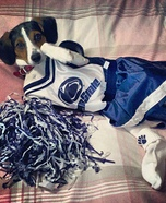 PSU Cheerleader Costume for Dogs