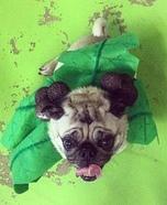 Pug Palm Tree Homemade Costume