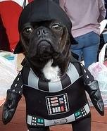 Pug Vader Costume