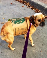 Puggle Spice Latte Homemade Costume