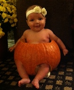 Pumpkin Pie Baby Costume Idea