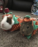 Pumpkin Piggies Homemade Costume