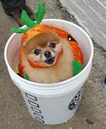 Pumpkin Spiced Latte Homemade Costume