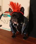 Punk Rocker Dog Homemade Costume