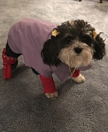 Punky Brewster Dog Homemade Costume