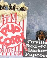 Pupcorn Homemade Costumes
