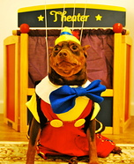 Pupocchio Costume for Dogs