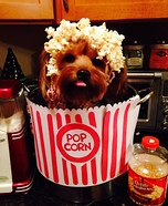 Creative costume ideas for dogs: Puppy Corn