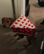 Puppy Pie Dog Homemade Costume