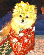 Puppy Present Costume Idea