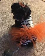 Puppy Prisoner Homemade Costume