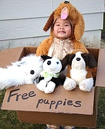 Creative homemade costumes for babies - Free Puppies Costume