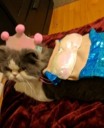 Purrrrrrmaid Homemade Costume
