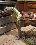 Quarter Horse Dog Costume