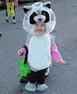 Raccoon Baby Costume