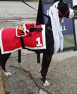 Racehorse Dog Homemade Costume